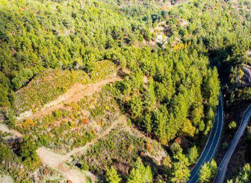 Huge land for sale in Pera Paidi