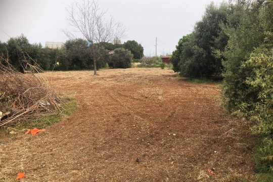 Land for sale in Zakaki