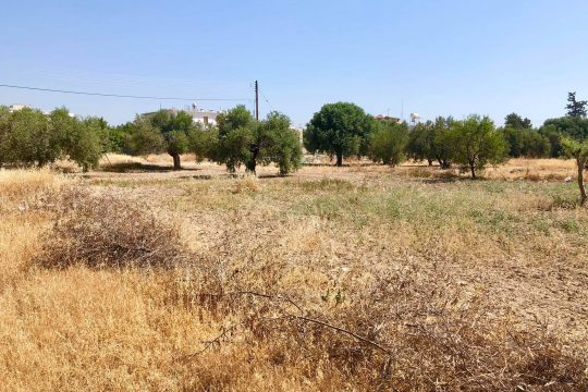 Two attached parcels of land (Approximately 800 sq. m.) for sale in a quiet residential area close to the centre of Ypsonas.
