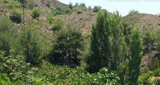 Residential land in Kato Platres