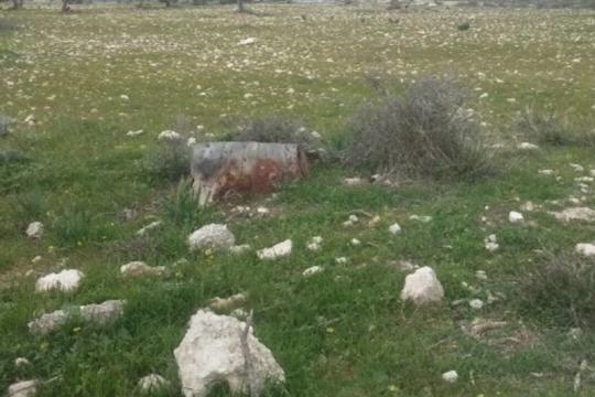 Field in Pentakomo, Limassol