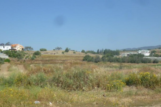 Field in Pyrgos, Limassol
