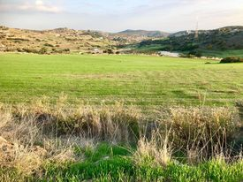 Land for sale in Parekklisia, Limassol