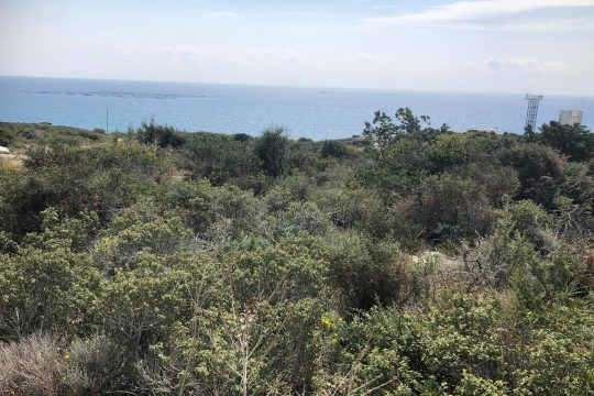 Land for sale in Pentakomo near the Governor's beach with a truly magnificent view of the beach